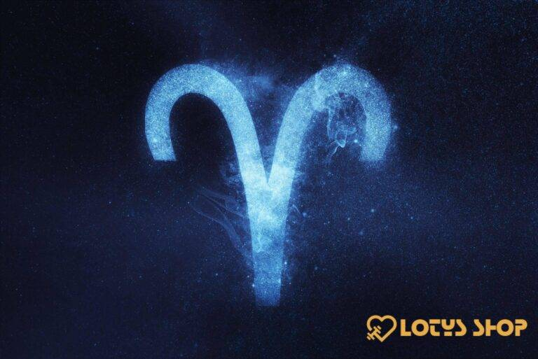 Lotys Shop Aries https://lotys-shop.com/aries/